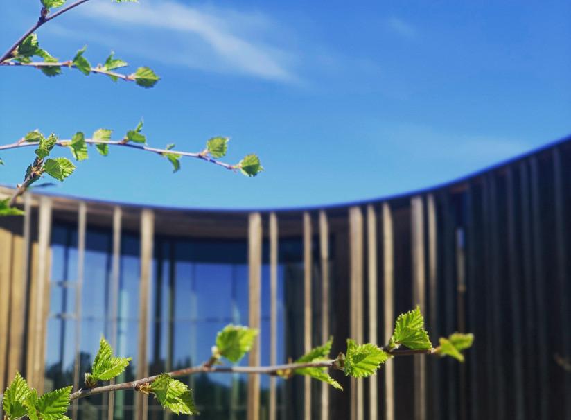 GOLLEGIELLA – Pohjoismainen saamen kielen kielipalkinto jaetaan syksyllä 2020