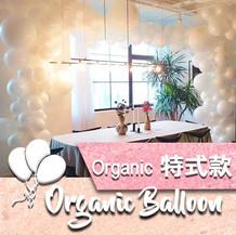 organic-balloon-icon.jpg