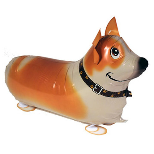 "18"" Corgi Dog Walking Pet Helium Balloon - wp07"