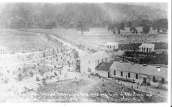 ICAdams 1865 Brannan Resort