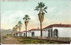 Palm Row