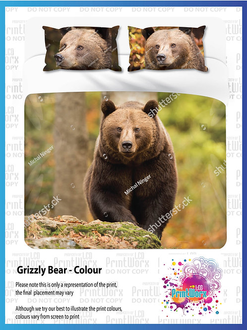 Grizzly Bear -Full Colour