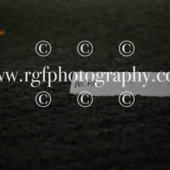 WEU_7743.jpg