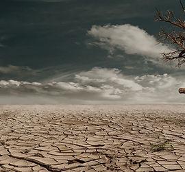 Klimawandel2.jpg