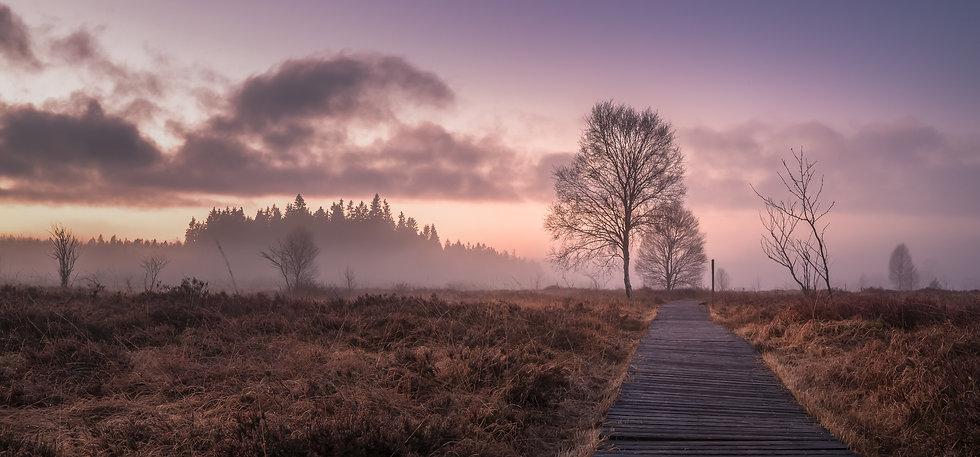 home_vennkalender.jpg