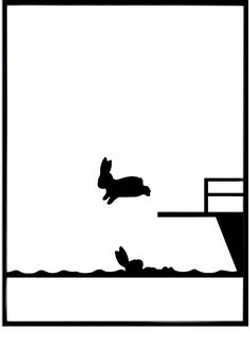 lapin piscine