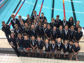 Swimmers shine at summer champs