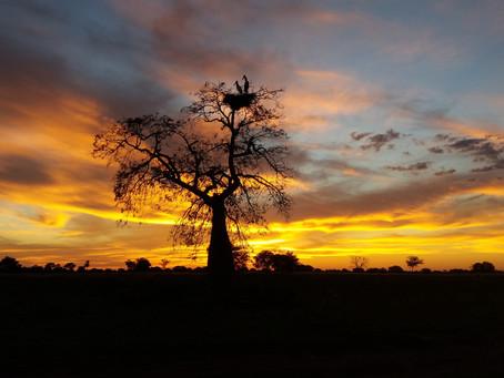Deja de viajar al exterior y vive Paraguay