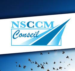 LOGO NSCCM Conseil