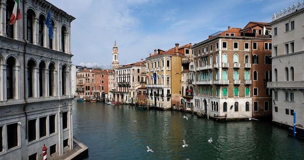 Durante el confinamiento, los canales de la ciudad italiana de Venecia se volvieron virales por sus aguas cristalinas y delfines que paseaban por ellos.