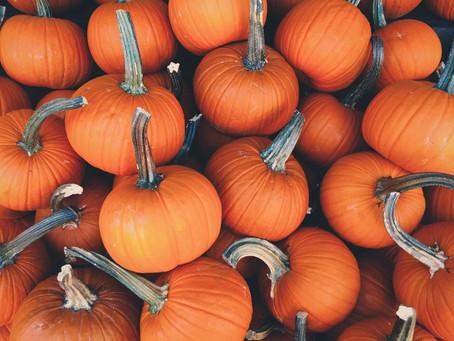 Cinco ideas para celebrar Halloween 2020