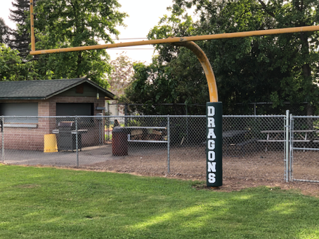 Completed: New Goalpost Pads