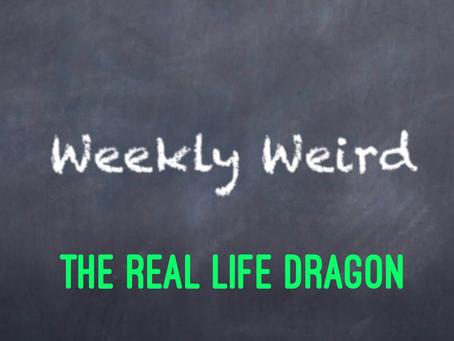 The Real Life Dragon.