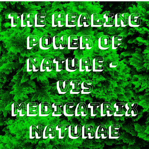 The Healing Power of Nature - Vis Medicatrix Naturae