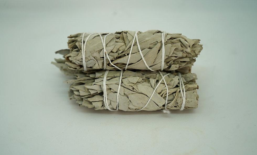 White Sage Smudging Stick || Salvia apiana || Sacred Sage