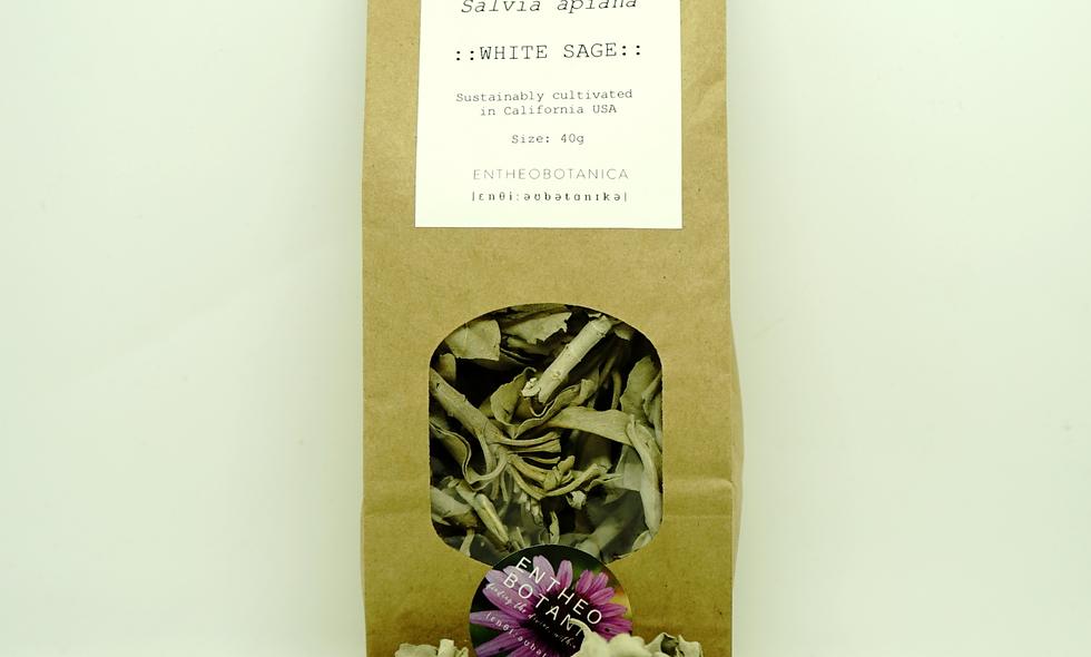 White Sage Loose Leaf || Salvia Apiana || Sacred Sage