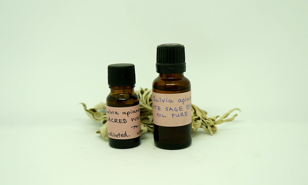 White Sage Essential Oil || Salvia apiana || Sacred Sage