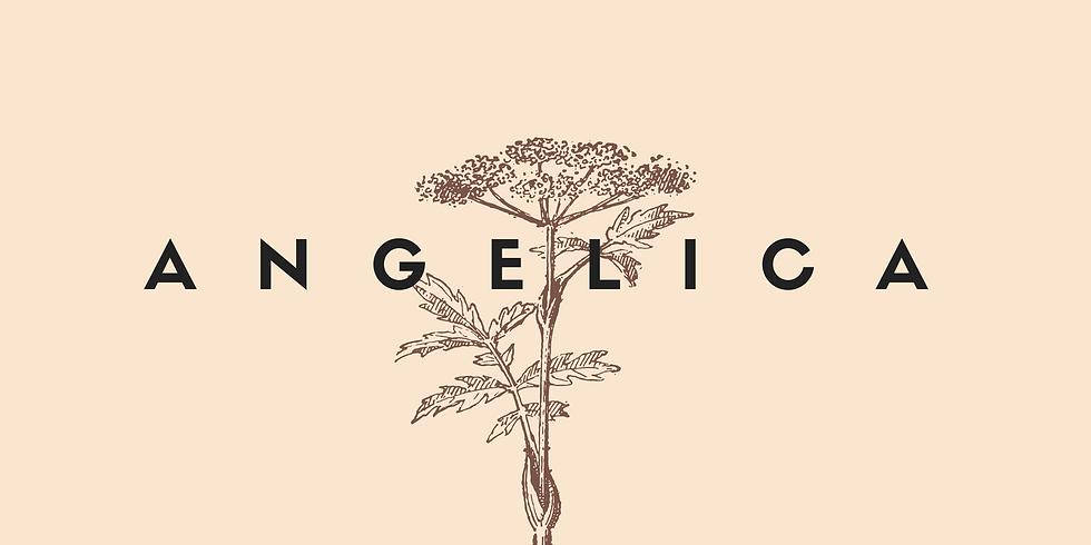 Herbal Dietas : Angelica : Building Plant Teacher Alliances ~ ONLINE