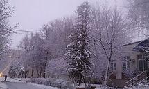 Зима в ГЦМ