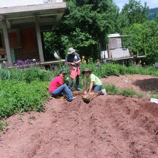 Kosovo Work 5.jpg
