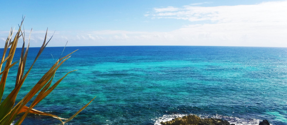 A Quick Day in Cozumel!