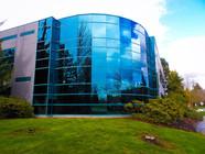 Film Installation Company - Windows Tinting