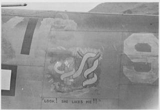 VB-135 artwork