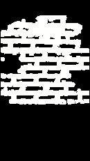 website brick element.png