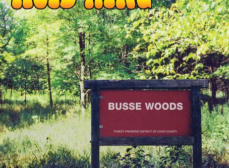 Acid King. 20 лет альбому Busse Woods