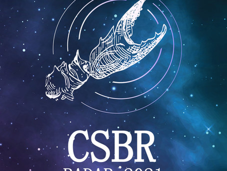 CSBR Radar. Spotify playlist:  Pale Keeper, Bongzilla, Dvne, Melvins