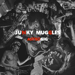 Junky Muggles — Astrogig
