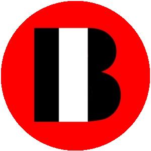 Logo Bassin Immobilier