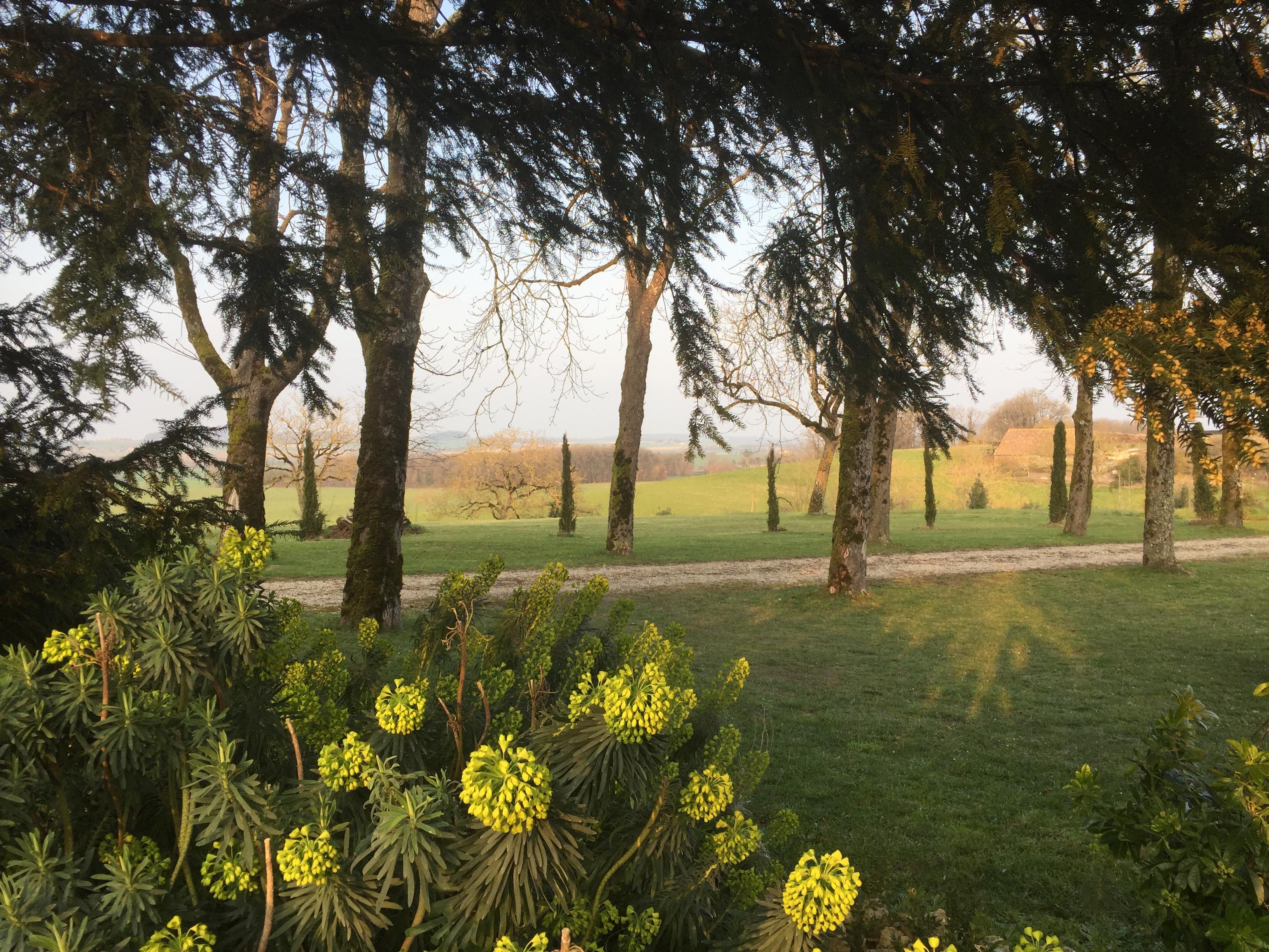 vue parc du Château
