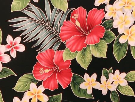 Hibiscus Flower Meaning - Hawaiian Symbolism