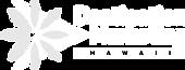 dmh_logo_white.png