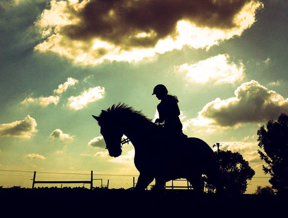 Israel horse riding silhouette photography sun clouds