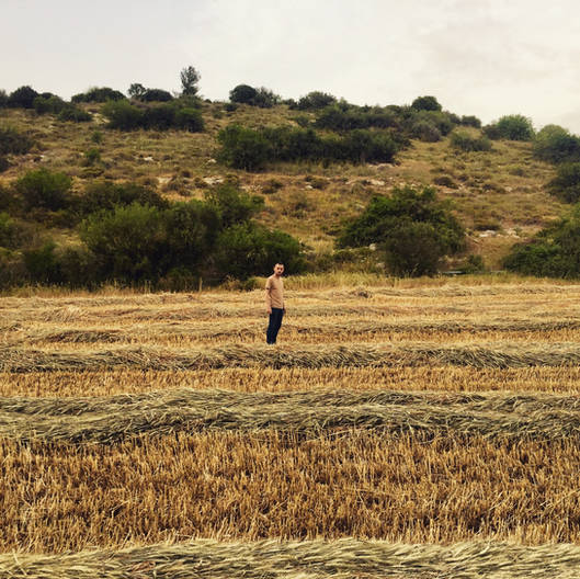 guy model sunset field nature israel photography portrait