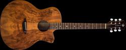 Guitar Supplies Rising Star
