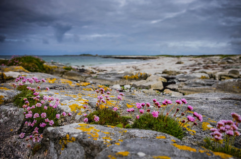Pollochar, Isle of South Uist