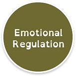 emotional-regulation.png