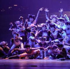 Apresentação da escola de dança em Curitiba, Believe Studio de Dança