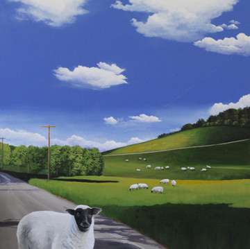 'Runaway Sheep'