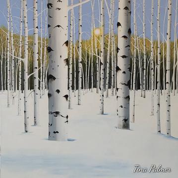 'Deep Snow'