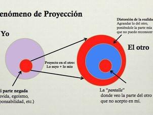 Crítica y proyección
