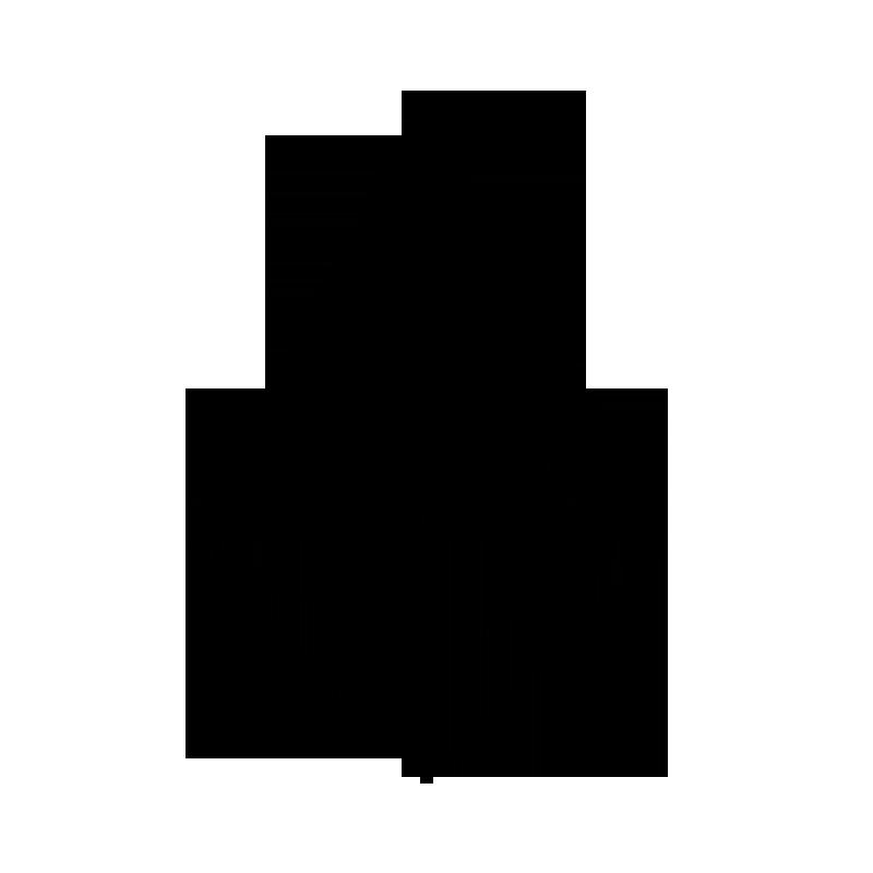 Logo-Icoon