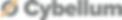 Cybellum Logo.png