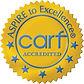 CARF_GoldSeal logo print.jpg