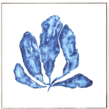 Share  Blue Coral Canvas 1