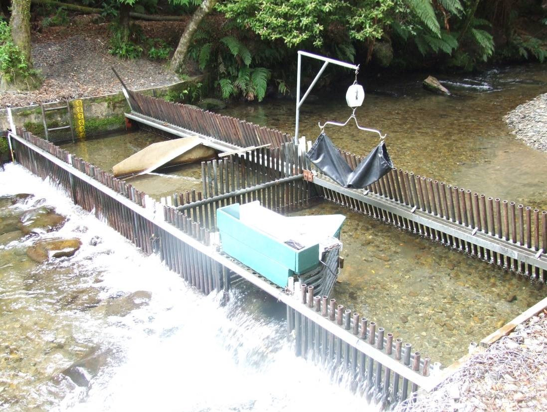 Typical fish trap