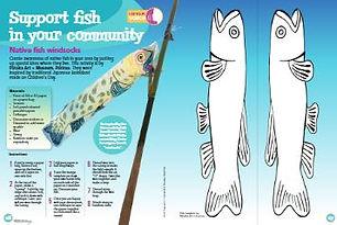 KCC Native Fish windsoc activity